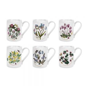 Portmeirion Seconds Botanic Garden Coffee Mugs Set of 6